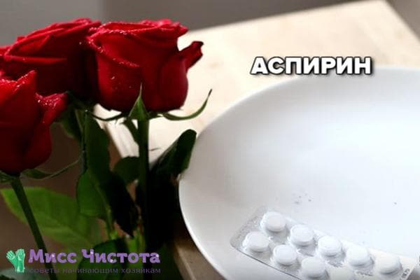 Аспирин для роз в вазе