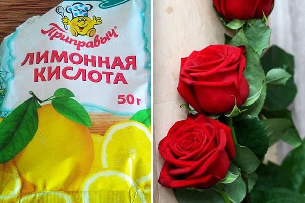 Лимонная кислота для роз в вазе