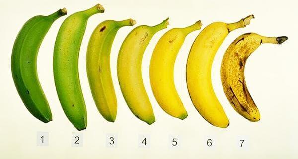 Степени зрелости бананов