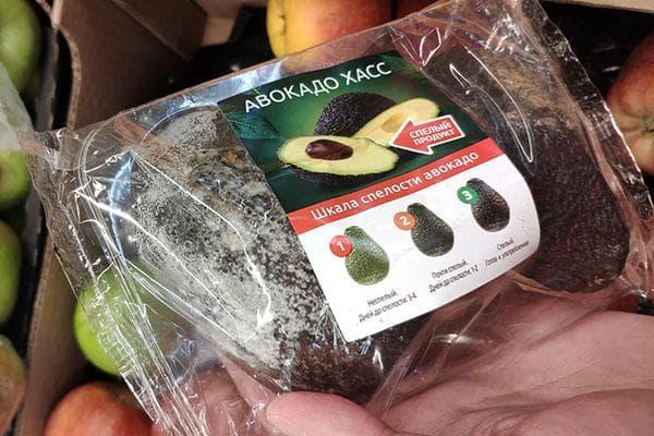 Степени зрелости авокадо Хасс
