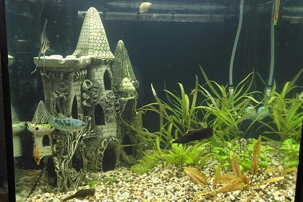 Керамический замок в аквариуме