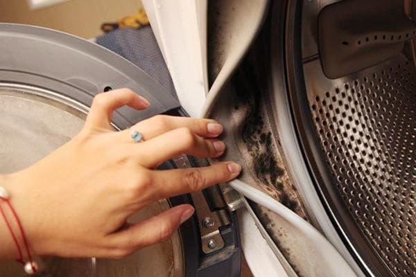 Плесень на уплотнительной резинке стиральной машины