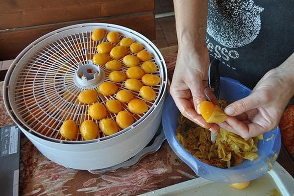 Сушка абрикосов дома