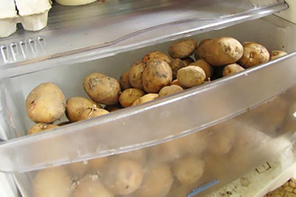 Картофель в ящике для овощей в холодильнике