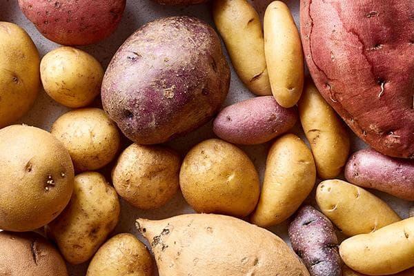 Разные сорта и виды картофеля
