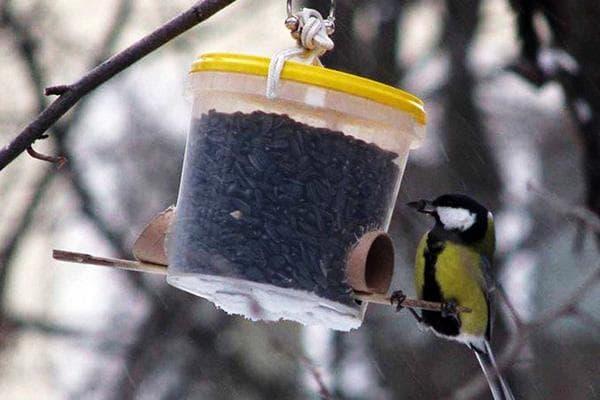 Кормушка для птиц, сделанная из пластикового ведерка