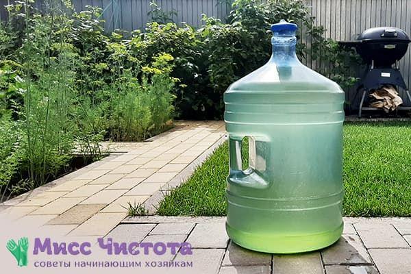 Позеленела бутыль с водой изнутри