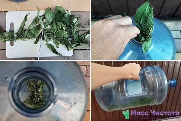Чистка 19-литровой бутыли крапивой