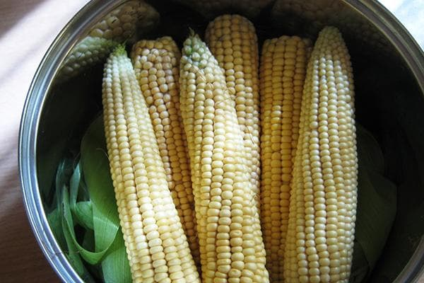 Початки кукурузы в кастрюле