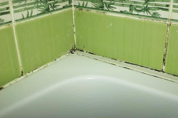 Плесень на герметике в ванной