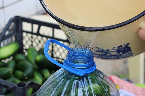 Засолка огурцов в пластиковой баклажке