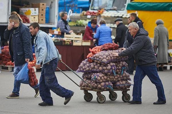 Мужчины везут картофель в мешках
