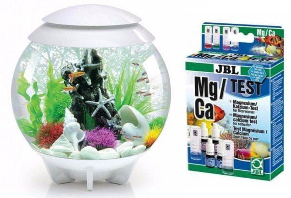 аквариум и тесты