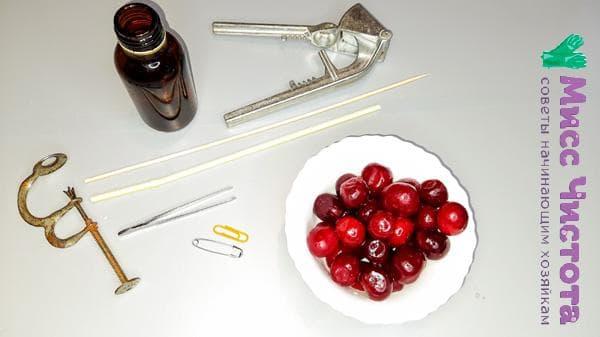 Инструменты для удаления косточек из вишни
