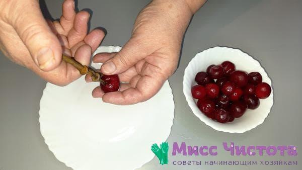 специальный инструмент для удаления косточек из ягод