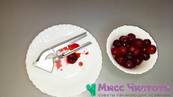 чеснокодавка и вишни