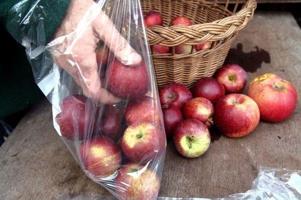 Яблоки в полиэтиленовых мешках