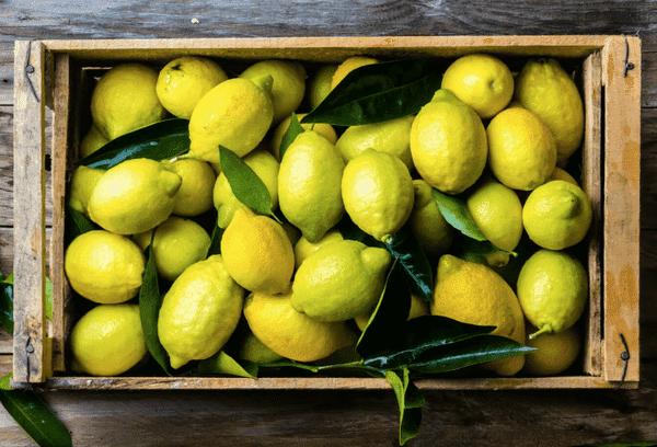 Хранение целых лимонов в домашних условиях